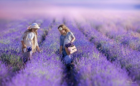 Little girls - children, irina nedyalkova, lavender, purple, flower, summer, copil, pink, couple, field