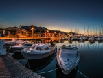 Yachts and Boats in Marina