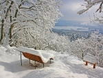 Bench under the Snow