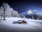 Hut On The Snow
