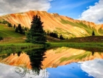 Spectacular Lake Reflection