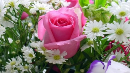 Pink Rose With Other Flowers - flowers, pink, rose, nature, bouquet