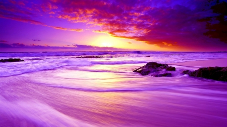 Excellent Purple Beach Sunset Sunsets Nature Background Wallpapers Download Free Architecture Designs Scobabritishbridgeorg