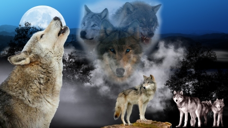MaDonnas Wolves - lobo, Firefox Persona, collage, sky, trees, spirits, loup, dark, full moon, mountains, wolf, wolves