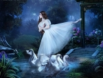 ballerina and swans
