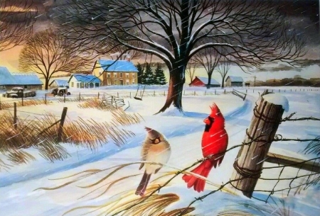 BEFORE THE STORM - villages, love four seasons, birds, attractions in dreams, winter, cardinals, countryside, paintings, snow, nature