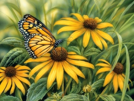 Monarch Butterfly - love four seasons, spring, paintings, butterfly, summer, flowers, garden, nature, butterfly designs