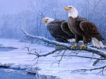 Bald Eagles on the Branch