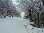 winter in the road  after village vllase