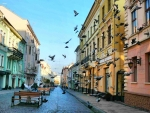 Street with Pigeons