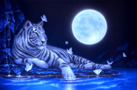 Moonlight White Tiger - white tiger, moons, paintings, love four seasons, tiger, butterflies, butterfly designs, animals