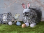 Just Easter friends