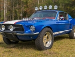 67 off road ford mustang