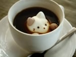 Japanese Kitten Marshmallows Coffee