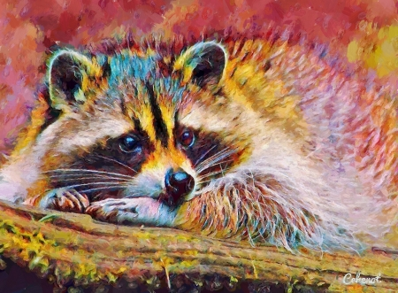 Raccoon - yellow, by cehenot, cehenot, raccoon, animal, cute, painting, pink, pictura