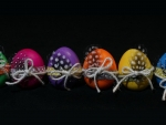Easter Eggs & Feathers