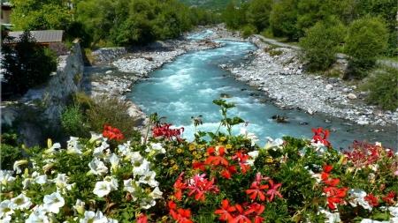 Summer Wildflowers - wildflowers, stones, greenery, rocks, fall, slope, summer, nature