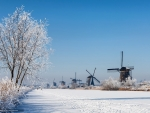 Winter in Netherlands