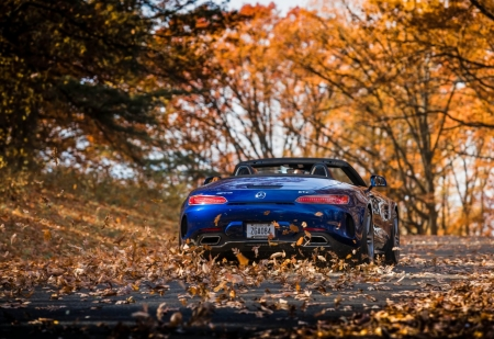 mercedes amg gtc roadster - mercedes, autumn, road, roadster