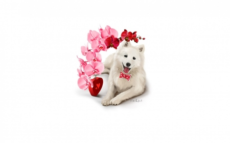 Happy Valentine's Day! - red, art, caine, valentine, animal, card, orchid, heart, flower, white, pink, dog