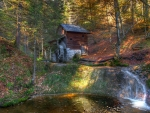 Watermill in Forest