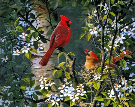 Spring bonding - pretty, art, birds, beautiful, spring, freshness, cardinals, tree, gathering, flowering, blooming, branches