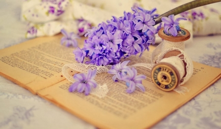 ♥ - abstract, flowers, photography, purple
