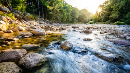 Mad River, New Hampshire, United States - forest, rocks, sun, stones, river, nature, trees
