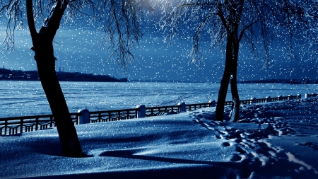 Snowfall In Winter Night Winter Nature Background