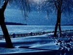 Snowfall in Winter Night