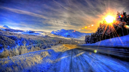 Sunny Day in Alaska - sun, snow, alaska, sunny, season, nature, trees, winter