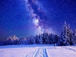 Milky Way Winter Sky