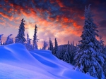Sunset Over the Snowy Hillside