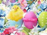 Easter Chick & Flowers