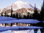 Mt. Rainier & Crystal Mountain