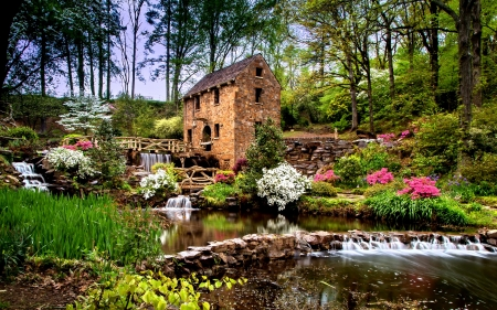 Spring Around the Old Mill - water, flowers, nature, creek, trees