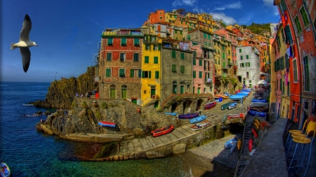 Riomaggiore,Cinque Terre,Italy - houses, birds, sailing, nature, sailboat, sea, italy