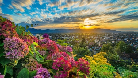 A beautiful spring day sunsets nature background wallpapers on a beautiful spring day mightylinksfo