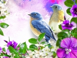 Bright Flowers & Blue Birds