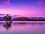 Lake Wanaka,New Zealand