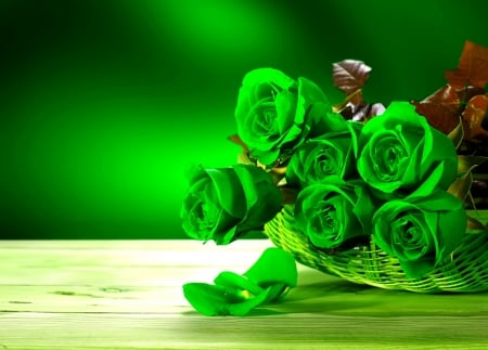Green Roses Flowers Nature Background Wallpapers On Desktop