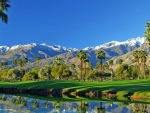 Great Palm Springs,California