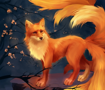 Nine Tails Fox Fantasy Abstract Background Wallpapers On