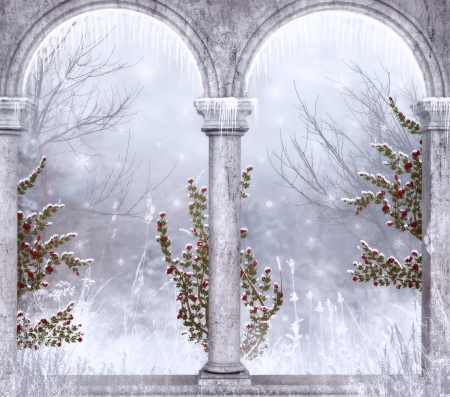 Winter - red, luminos, rose, iarna, terrace, winter, flower, white, column