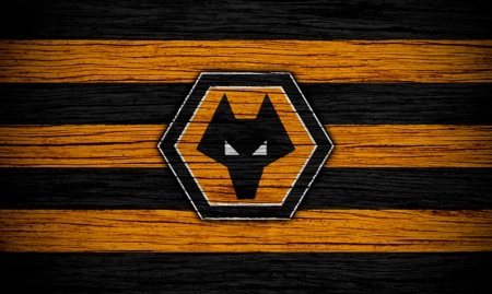 The Wolves - fc, wolves fc, the wolves, molineux, wallpaper, english, out of darkness cometh light, football, wwfc, soccer, england, wolves football club, wolverhampton wanderers football club, fwaw, wolverhampton wanderers fc, wolverhampton, screensaver, fans, gold and black, wolf, wanderers, wolves