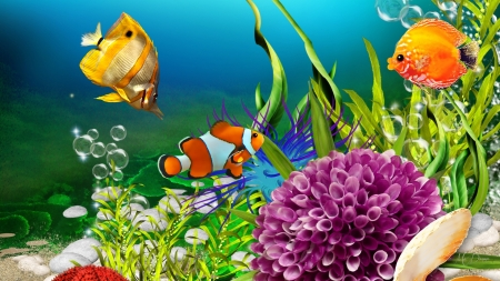 Itty Bitty Fishes - sand, fish, sea shells, plants, coral, Firefox Persona theme, sea