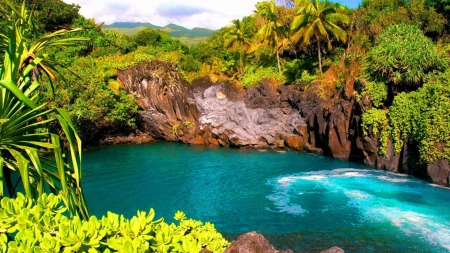 Hawaii - Seven Seas Island - lagoon, rocks, hawaii, palm, nature, trees, sea