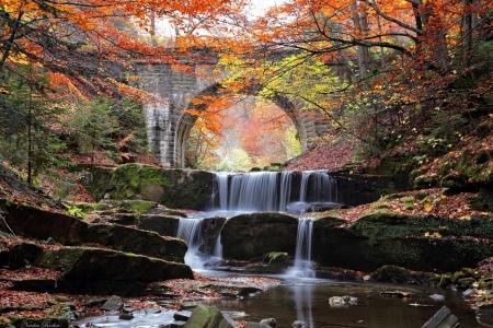 Forest Waterfall Waterfalls Nature Background Wallpapers On Desktop Nexus Image 2364146