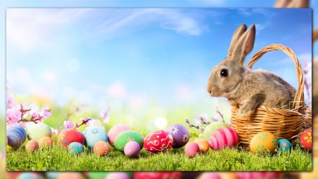 Easter Bunny Other Animals Background Wallpapers On Desktop