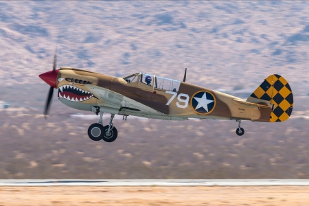 WW2 P40N Warhawk - military, aircraft, warhawk, ww2